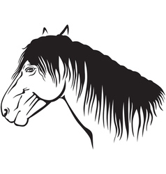 Old horse vector