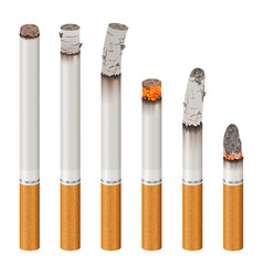 Realistic cigarettes set stages of burn vector