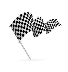 Single Checkered Racing Flag Avto vector image