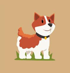 Smiling welsh corgi standing on green grass dog vector
