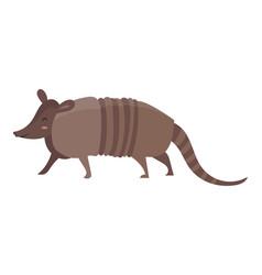 Cartoon armadillo vector