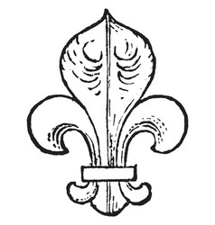 Fleur-de-lis are used as a charge in heraldry vector