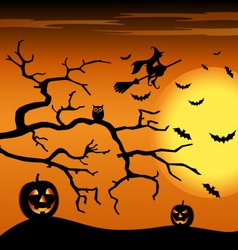 Halloween night orange background with witch and vector image