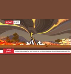 Live brodcasting dangerous wildfire australia bush vector