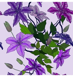 Seamless Floral Background with Clematis vector image