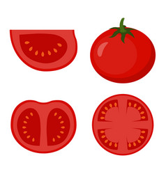 set with tomato vector image