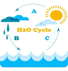 Water cycle infographics vector