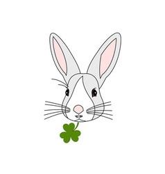 Rabbit-Head-380x400 vector image vector image