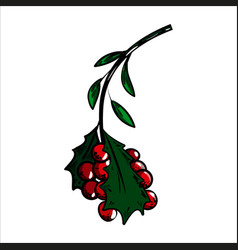 color sketch holly branch and red berries vector image