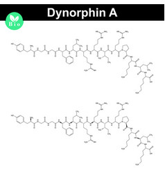 dynorphin a chemical structure vector image