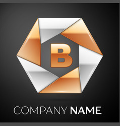 letter b logo symbol in the colorful hexagon on vector image