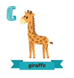 Giraffe G letter Cute children animal alphabet in vector image