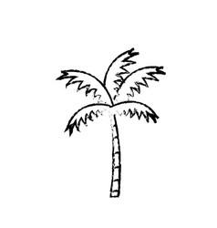beach palm tree vector image
