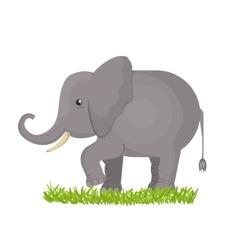 elephant isolated design vector image