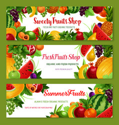 Fruit shop banners of fresh natural fruits vector