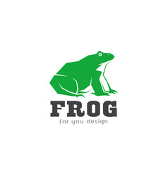 green frog design on white background amphibian vector image