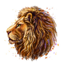 lion artistic color profile portrait a lion vector image