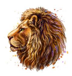 Lion artistic color profile portrait a vector