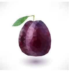low poly plum vector image