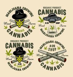 marijuana growing set four color emblems vector image