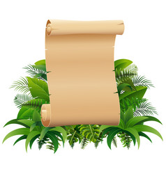 Old rolled up paper scroll on the leaves vector