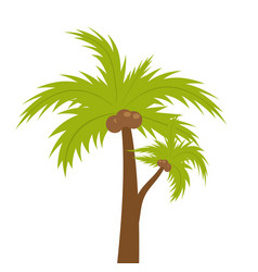 palm tree icon flat cartoon style summer beach vector image