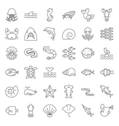 Aquatic ocean life outline icon set vector