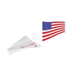 Plane with american flag vector