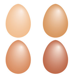 set 3d realistic eggs shape chicken eggs vector image