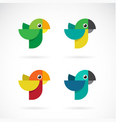 Set parrot design on white background wild vector