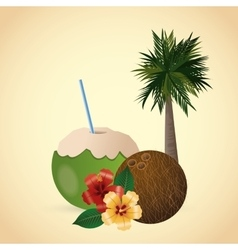 Tropical design flower concept coconut icon vector image