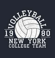 Volleyball new york grunge print vector