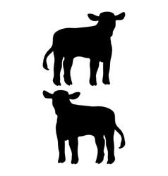 calf vector image vector image