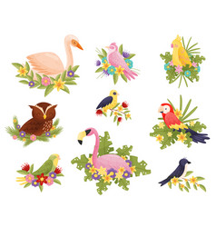 birds ollection on white background animals and vector image