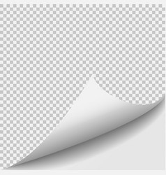 Curl corner paper template Transparent grid vector image