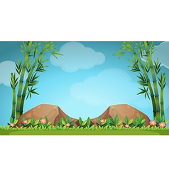 Scene with rocks and bamboo vector image vector image
