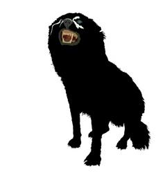 aggressive dog vector image