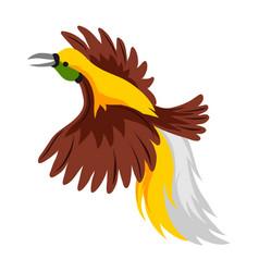 Bird paradise tropical exotic vector