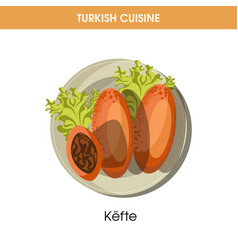 Nutritious kefte with lettuce leaves from turkish vector