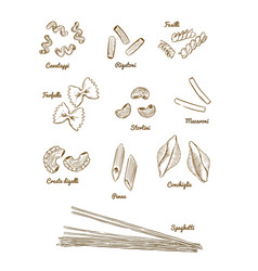 pasta set type of pasta hand draw sketch vector image