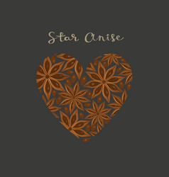 star anise spice in a heart shape vector image