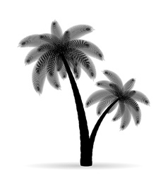 palm tree silhouette 05 vector image