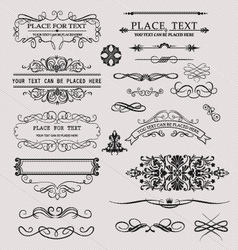 Set of calligraphic element vector