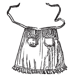 Apron are part of the body vintage engraving vector
