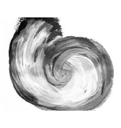 black halftone vortexdotted swirl vector image