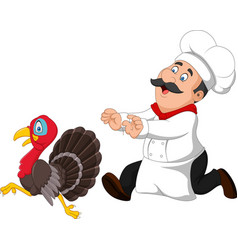 cartoon chef trying to catch a turkey vector image
