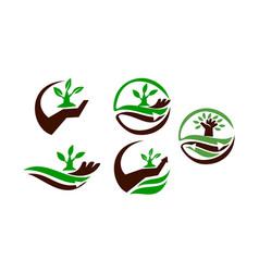 farm and garden care vector image