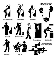 Kidney stone icons pictograph and diagrams depict vector