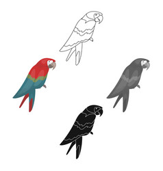pirate s parrot icon in cartoonblack style vector image
