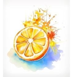 Watercolor painting juicy orange vector